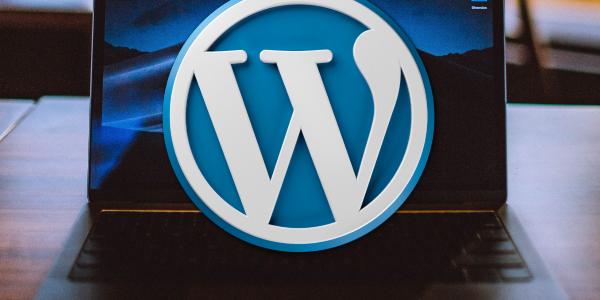 Manually Updating WordPress